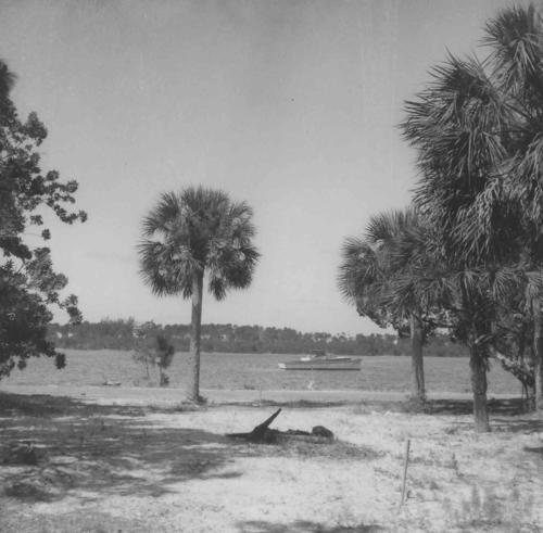 View of Anclote River.